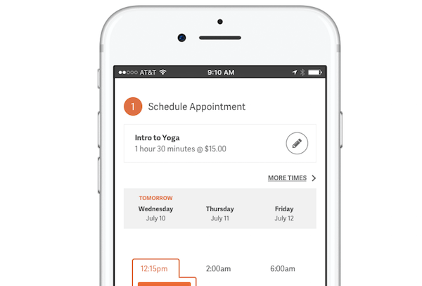 Acuity Scheduling - WordPress appointment scheduling plugin.