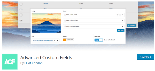 Screenshot of advanced custom fields from wordpress.org